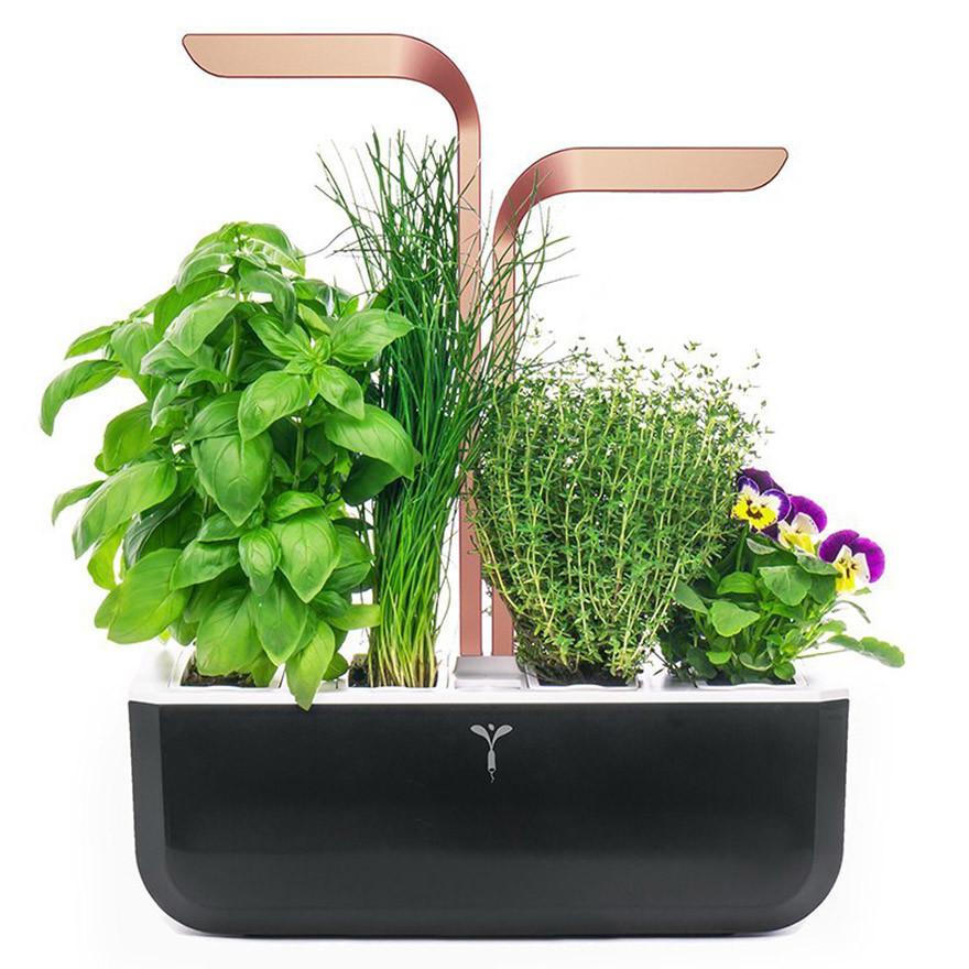 Potager Véritable® SMART Copper - Technologie ADAPT' LIGHT - Jardin autonome d'intérieur Made in France (Noir-Cuivré)