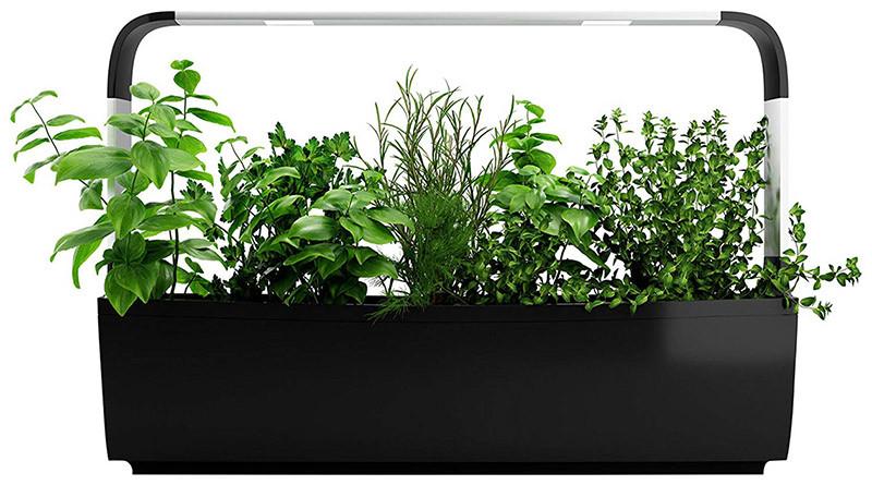 Tregren T12 - Potager d'intérieur Connecté 12 plantes