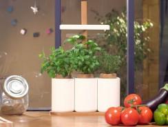 Comment bien choisir son potager ou son jardin intérieur ?